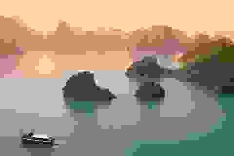 Tour Sài Gòn - Quảng Ninh qua sân bay Vân Đồn chỉ có 5 triệu đồng