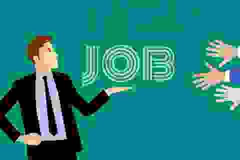 ILO: Chỉ 12% nguồn việc làm đòi hỏi kỹ năng cao