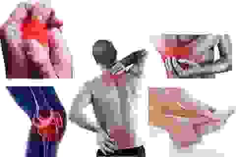 Hoàng Thấp Linh hỗ trợ giảm triệu chứng đau nhức xương khớp như thế nào?
