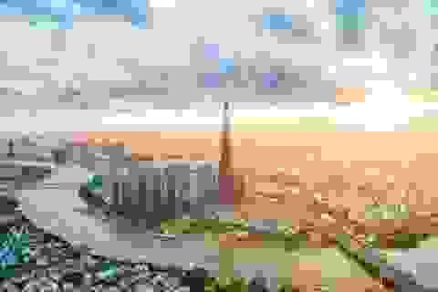 Vingroup giữ vững vị thế doanh nghiệp tư nhân lớn nhất Việt Nam