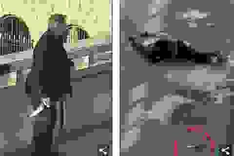Tấn công khủng bố kinh hoàng ở trung tâm London, 3 người chết