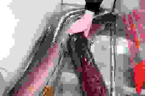 """Người dân bắt được 2 con cá lệch """"khủng"""", bán gần 30 triệu đồng"""