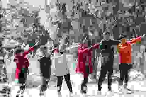 """Giới trẻ đổ xô về rừng bách xanh phủ tuyết trắng ở Ba Vì check-in """"sống ảo"""""""