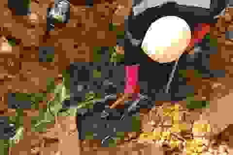 Hà Nội: Chủ tịch HTX môi trường đổ trộm chất thải nguy hại trên núi Sóc Sơn