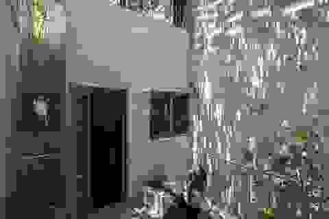 """Ngỡ ngàng với ngôi nhà ở TP. HCM như """"ốc đảo xanh"""", ai nhìn cũng mê"""