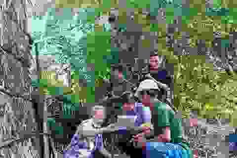 """Diến tiến """"nóng"""" vụ chặt cây trên đất đã mua, nguy cơ ngồi tù tại Kiên Giang!"""