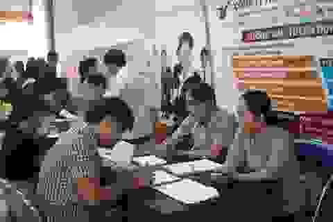 Quảng Ngãi:  Hơn 40.000 lao động tìm được việc làm ổn định trong năm 2019