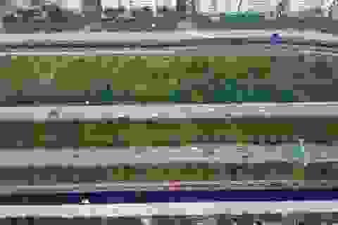 Đường gom Đại lộ Thăng Long thêm 4 làn xe, phục vụ đua xe F1