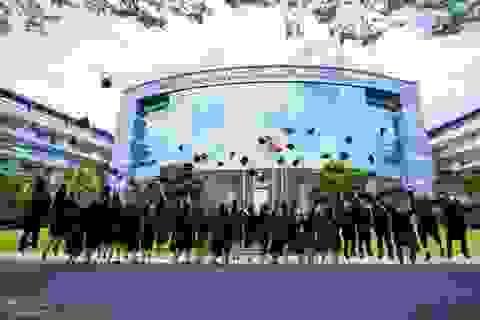Kiến nghị Thủ tướng công nhận Hội đồng trường của cơ sở giáo dục đại học