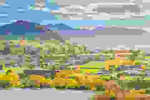 Tới New Zealand chưa bao giờ dễ dàng đến thế