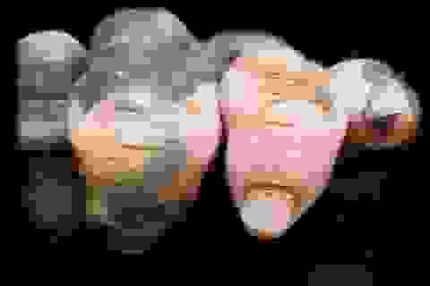 """Chú gorilla trở thành ngôi sao mạng xã hội nhờ sở hữu """"ngón tay người"""""""