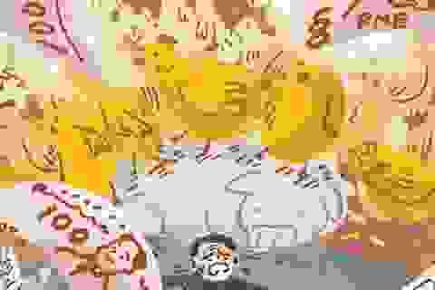Họa vô đơn chí: Lợn chết, giá tăng vọt, dân Trung Quốc lại khốn đốn về chăn nuôi gà