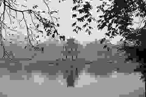Cải tạo, chỉnh trang hồ Hoàn Kiếm: Rất cần một cuộc thi kiến trúc nghiêm túc