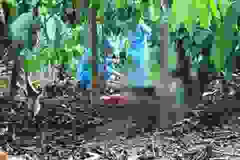 Bắt nghi phạm sát hại người phụ nữ, phi tang xác ở rẫy cà phê