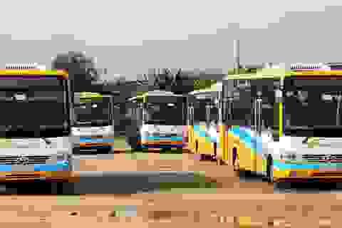 Vụ ngừng việc tập thể: Công ty hứa sẽ trả lương, tài xế xe buýt đã đi làm trở lại