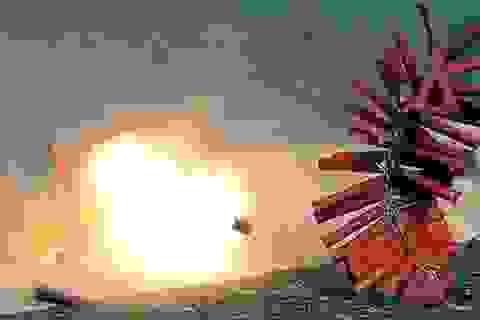 Giáo viên chủ nhiệm và nhà trường chịu trách nhiệm liên đới nếu học sinh mua bán, sử dụng pháo