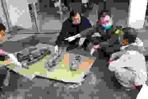 Ngang nhiên vác súng vào di sản thiên nhiên thế giới săn động vật quý hiếm