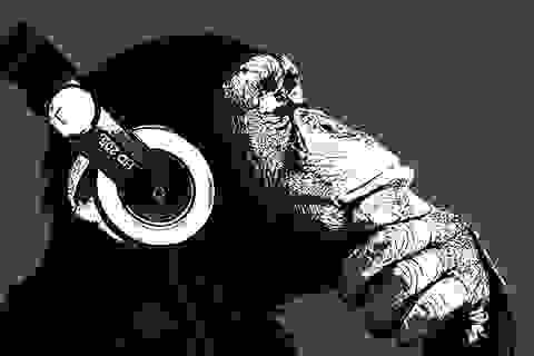Bất ngờ trước khả năng cảm thụ âm nhạc của tinh tinh