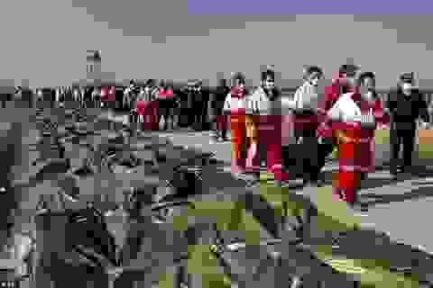 Thoát chết trong thảm kịch Iran bắn nhầm máy bay Ukraine nhờ đổi vé phút chót
