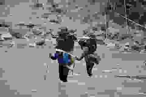 Thanh Hoá: Cận Tết, nhiều cụ bà gần 70 tuổi vẫn băng rừng, lội suối hái lá dong
