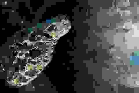 Phát hiện tiểu hành tinh nằm bên trong quỹ đạo của Sao Kim