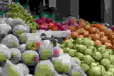 Mỗi ngày, Việt Nam chi gần 60 tỷ đồng mua rau quả Trung Quốc, Thái Lan