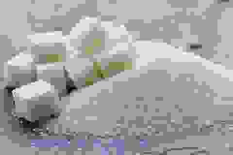 Tác dụng của đường đối với não giống như một loại thuốc gây nghiện