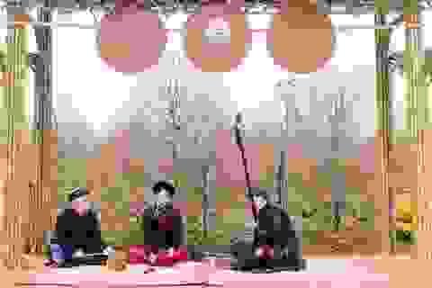 Choáng ngợp với 2 lễ hội hoa Xuân lập kỷ lục Việt Nam