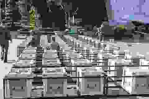 """Trận địa pháo hoa ở Quảng trường Đại Đoàn Kết trước giờ """"vàng"""""""