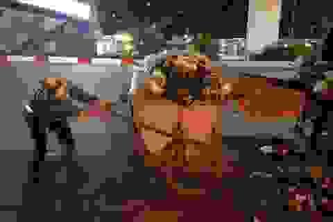 Tâm sự của nữ lao công thu dọn rác xuyên đêm dịp đầu năm Canh Tý