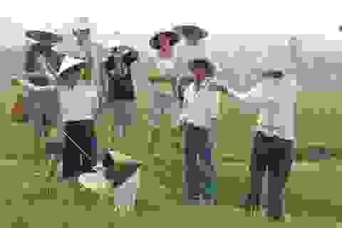 """Khách Tây đến Ninh Bình """"mê"""" làm… nông dân"""