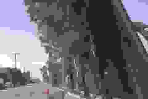 Gió thổi đổ tường biên giới của ông Trump sang Mexico