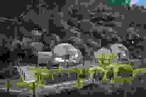 """""""Ngôi nhà bong bóng"""" sang trọng, trong suốt nằm giữa rừng rậm cùng những con voi"""