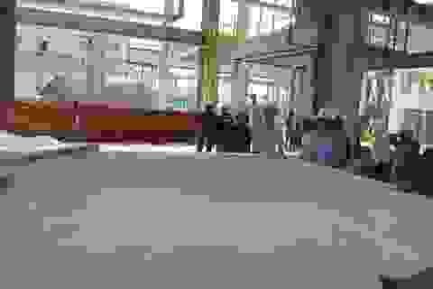 Đề nghị chưa đưa chuyên gia Trung Quốc trở lại Công ty Nhôm Đắk Nông