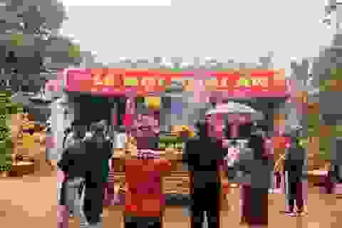 Dừng Lễ hội Khai ấn đền Trần 2020 để đề phòng dịch Corona