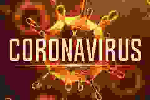 Ứng dụng di động giúp theo dõi tình trạng lây nhiễm của virus Vũ Hán trên toàn cầu