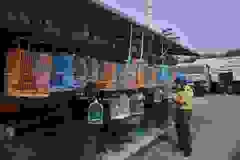 Kiểm tra chợ động vật hoang dã giữa thời dịch corona