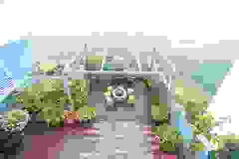 Choáng ngợp căn penthouse với sân vườn ngập cây xanh của doanh nhân Hà Nội
