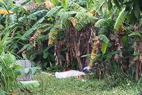 Tá hỏa phát hiện thi thể người đàn ông trong bụi chuối