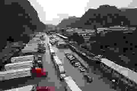 """Trung Quốc chậm mở cửa khẩu: Hàng loạt container nông sản phải """"quay đầu"""""""