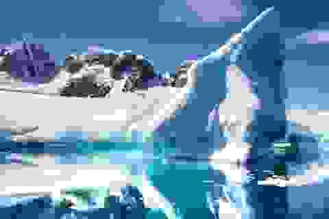 Nam Cực vừa trải qua ngày nóng nhất trong lịch sử