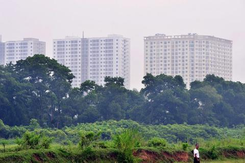 Đồ án quy hoạch phải đảm bảo vùng đệm, vùng sinh thái giữa các đô thị