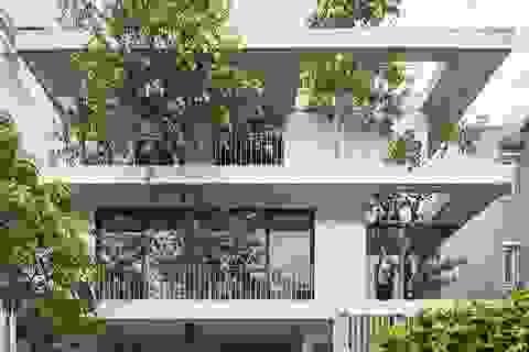 Biệt thự ở Sài Gòn gây ngỡ ngàng bởi thiết kế cây mọc xuyên mái nhà