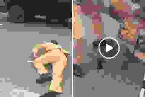 Hà Nội: Đôi nam nữ vượt đèn đỏ, tông gục cảnh sát giao thông