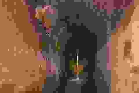 Nhật Bản tài trợ TPHCM gần 400 tỷ đồng để sửa 3km cống ngầm