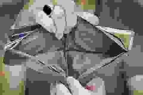 4 sai lầm tiền bạc khiến bạn mãi không giàu