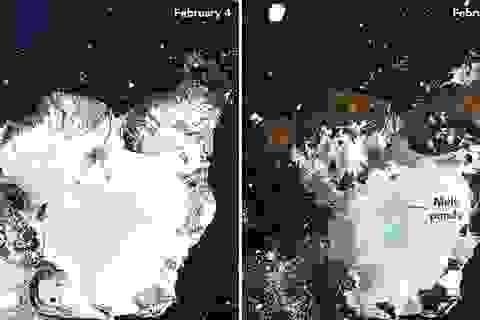 Băng Nam Cực tan chảy trơ trọi mặt đất do nhiệt độ tăng kỷ lục