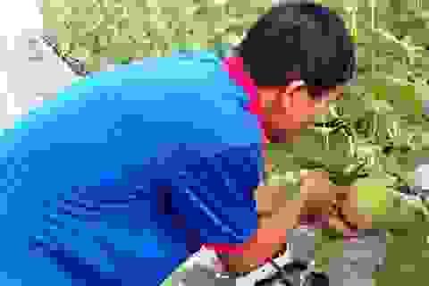Nghệ An: Tạo việc làm và thu nhập từ đào tạo nghề nông thôn