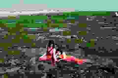 Vẻ đẹp mê hoặc lòng người của cánh đồng rong biển