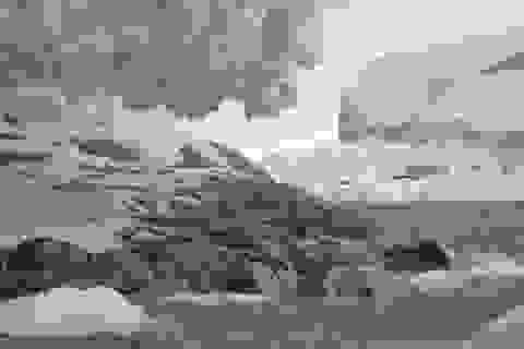 """Hòn đảo ở Nam Cực bất ngờ """"lộ diện"""" khi sông băng tan chảy"""